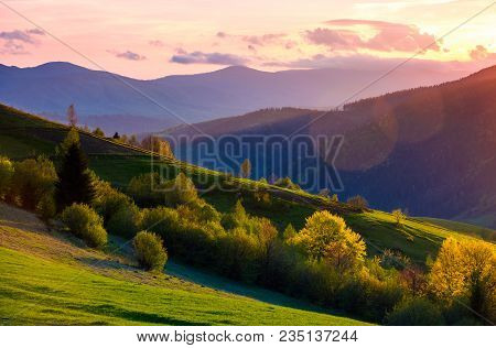 Colorful Sunset In Carpathian Countryside. Grassy Hillsides With Some Trees In Evening Light. Sky An