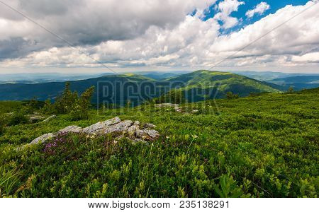Boulders And Flowers On A Grassy Hillside. Lovely Landscape In Mountains On A Cloudy Day