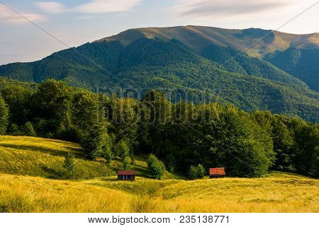 Two Woodshed Near The Forest In Mountains. Beautiful Summer Scenery In Evening. Location Apetska Mou