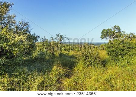 Rural Landscape With  Hills And Valleys Blue Sky