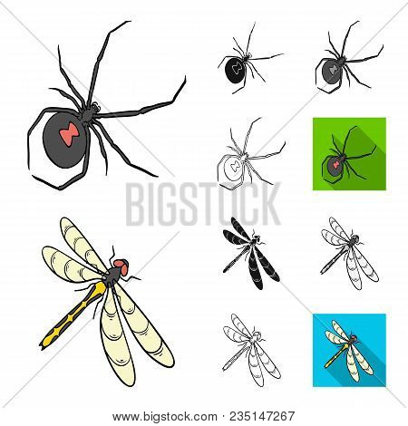 Different Kinds Of Insects Cartoon, Black, Flat, Monochrome, Outline Icons In Set Collection For Des