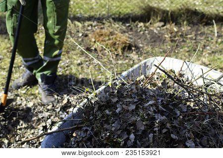 Man Legs, Rake And Metal Wheelbarrow On Green Spring Grass Background. Outdoors Yard Spring Cleaning