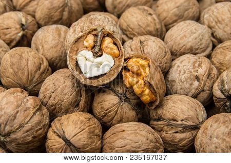 Walnut Kernels And Whole Walnuts. Healthy Organic Food Concept.