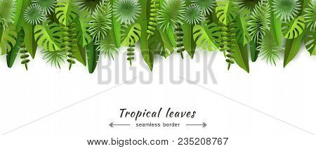 Tropical Leaves Seamless Border Isolated On White Background Abstract Horizontal Background For Summ