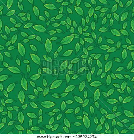 Green Leaves Pattern Background. Pattern Foliage Plant On Green Seamless Background