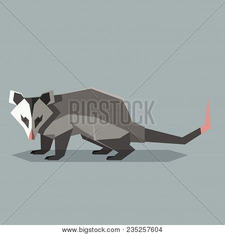Vector Image Of The Flat Polygonal Opossum