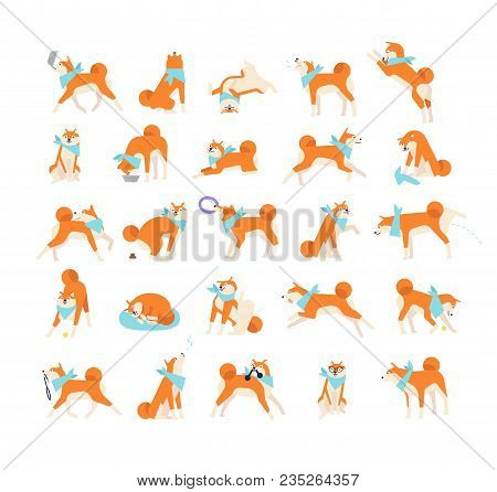 Collection Of Dog Performing Everyday Activities On White Background. Bundle Of Cute Japanese Shiba