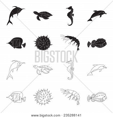Shrimp, Fish, Hedgehog And Other Species.sea Animals Set Collection Icons In Black, Outline Style Ve