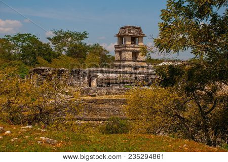 Chiapas, Mexico. Palenque The Code Name Of The Ruins Of A Large Mayan City In The Northeast Of The M