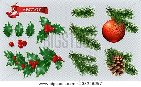 Christmas Decorations. Holly, Spruce, Red Berries, Christmas Bauble, Conifer Cone. 3d Realistic Vect