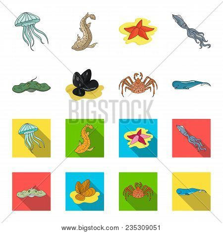 Electric Ramp, Mussels, Crab, Sperm Whale.sea Animals Set Collection Icons In Cartoon, Flat Style Ve