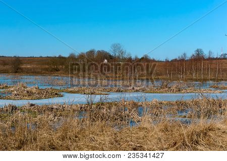 The Frozen Marsh, Marshland In Early Spring, The Ice In The Swamp In The Spring