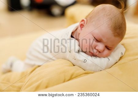 Cute Adorable Newborn Baby Sleeping On Belly With Plush Toy. New Born Child, Little Adorable Girl Of