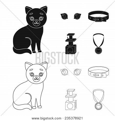 Cat Eyes, A Collar, A House For A Cat, A Medal On A Ribbon.cat Set Collection Icons In Black, Outlin