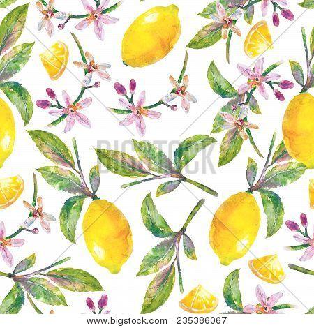 Lemons  With Green Leaves, Lemon Slices And Flowers. Seamless Pattern Branch Lemon Tree On White Bac