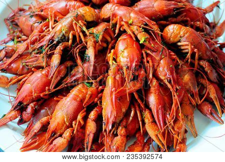 Big Plate Of Tasty Boiled Red Crawfish Closeup On Table, Gourmet Seafood Dinner. Crayfish Snack Read