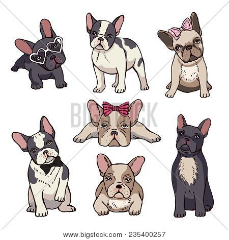 Funny Puppies Of French Bulldog. Vector Funny French Bulldog, Puppy Cute, Pet Drawing Sketch Illustr
