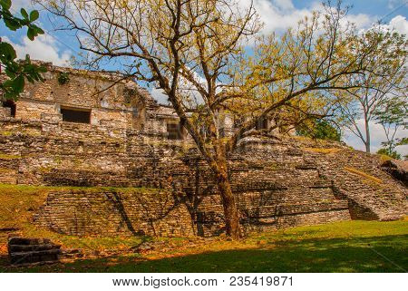 Chiapas, Mexico. Palenque. Landscape In The Ancient City Of Maya
