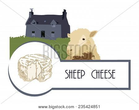 Sheep On The Background Of An Old French House With A Lawn And Sheep Cheese