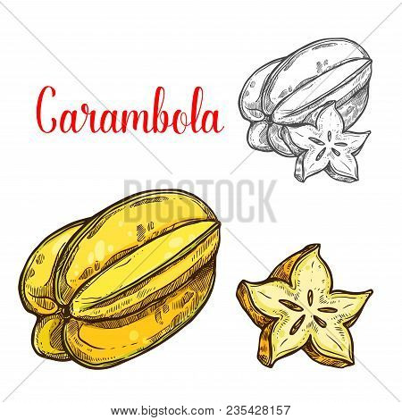 Carambola Fruit Sketch Of Exotic Tropical Starfruit. Yellow Juicy Carambola Isolated Icon For Fruity
