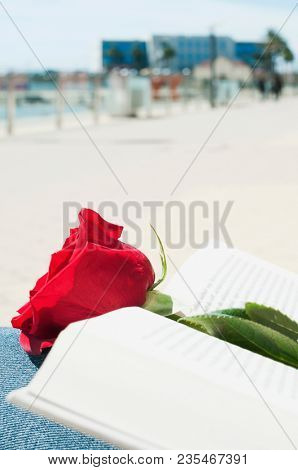 closeup of a red rose in an open a book for Sant Jordi, the Catalan name for Saint Georges Day, when it is tradition to give roses and books in Catalonia, Spain, on the lap of a young man outdoors