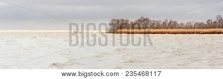 French Landscape. The Lagoon Of Vaccarès In Camargue On A Windy Day With Reeds.