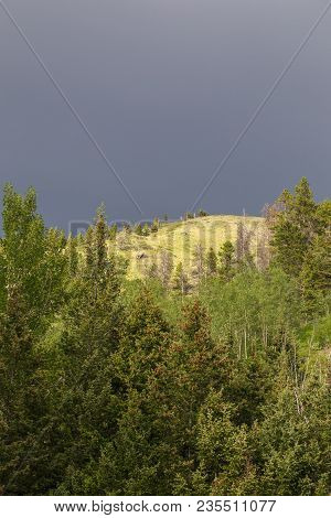 Dark Gray Sky Over Green Forest Landscape In Remote Area Of Highwood, Montana, Usa.