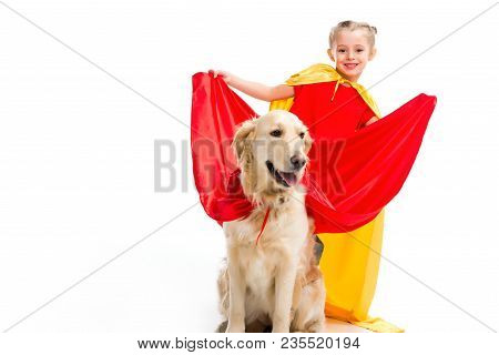 Smiling Supergirl Expanding Red Cape On Golden Retriever Isolated On White