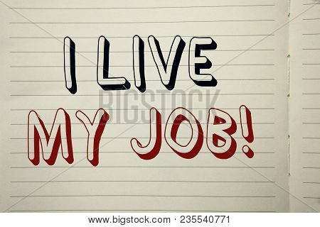 Text Sign Showing I Live My Job Motivational Call. Conceptual Photo Be Immerse In And Love Work Enjo