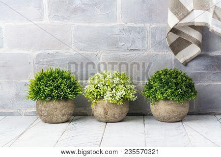 Artificial Plants In Stone Pots. Home Interior Decor. Copy Space