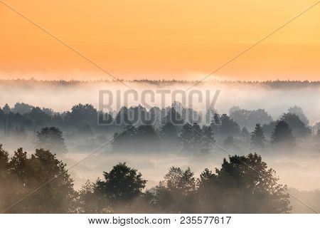 Misty Landscape. Scenic View. Morning Sky Over Misty Forest. Middle Summer Nature Of Europe