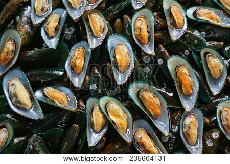 Too Soft, Fresh Mussels  In The Market At Thailand. Green Mussels Abstract Background. Seafood On Ic