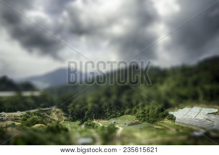 Tilt Shift Landscape Effect. Cameron Highland, Malaysia Surrounded By Hill And Cloudy Sky