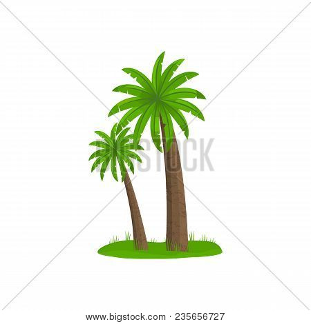 Palm Trees Isolated On White Background.  Flat Cartoon Palms On Small Piece Of Land. Logotype Or Ico
