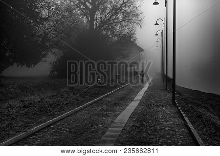 Mystical Walk Path With Fog Silhouette Of Trees And Man, Misty Walkside, Foggy Place.