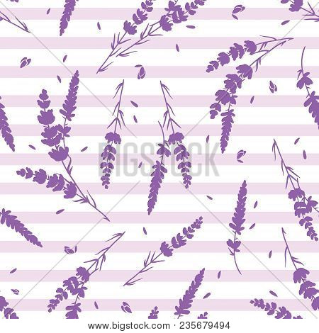 Lavender Flowers And Stripes Vector Repeat Pattern. Beautiful Violet Lavender Retro Background. Eleg