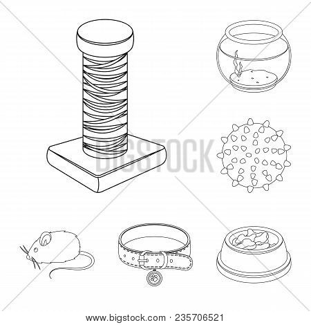 Pet Shop Outline Icons In Set Collection For Design.the Goods For Animals Vector Symbol Stock  Illus