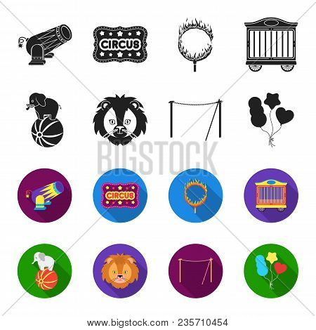 Elephant On The Ball, Circus Lion, Crossbeam, Balls.circus Set Collection Icons In Black, Flet Style