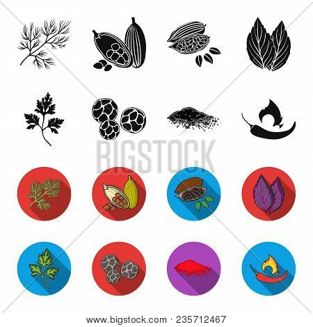 Ptrushka, Black Pepper, Paprika, Chili.herbs And Spices Set Collection Icons In Black, Flet Style Ve