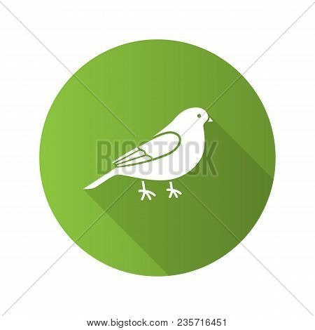 Canary Flat Design Long Shadow Glyph Icon. Songbird. Vector Silhouette Illustration