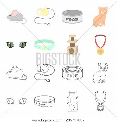 Cat Eyes, A Collar, A House For A Cat, A Medal On A Ribbon.cat Set Collection Icons In Cartoon, Outl