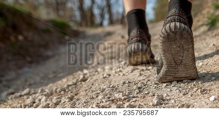 The Man Runs Along The Path. Smart Running Through The Forest. Concept Of Training, Track And Field