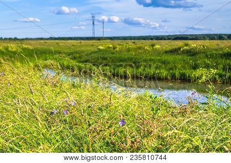 Lush Blooming Meadow In The Bright Sunlight. Boundless Russian Expanses.