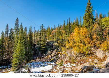Season changing, first snow and autumn aspen trees in  Rocky Mountain National Park, Colorado, USA.