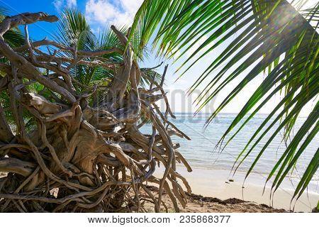 Mahahual Caribbean beach in Costa Maya of Mayan Mexico