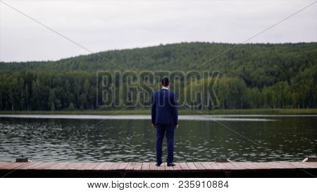 Rear View Of Businessman Looking At Picturesque Nature Landscape. Clip. Rear View Of Businessman On