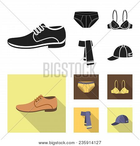Male Shoes, Bra, Panties, Scarf, Leather. Clothing Set Collection Icons In Black, Flat Style Vector