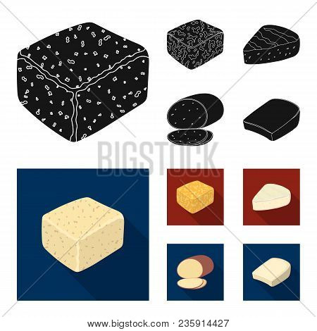 Brynza, Smoked, Colby Jack, Pepper Jack.different Types Of Cheese Set Collection Icons In Black, Fla