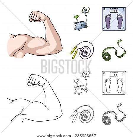 Biceps, Exercise Bike, Scales For Weighing, Skalka. Fitnes Set Collection Icons In Cartoon, Outline