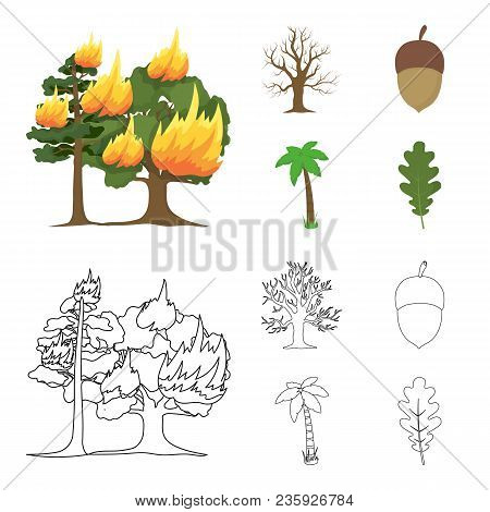 Burning Tree, Palm, Acorn, Dry Tree.forest Set Collection Icons In Cartoon, Outline Style Vector Sym
